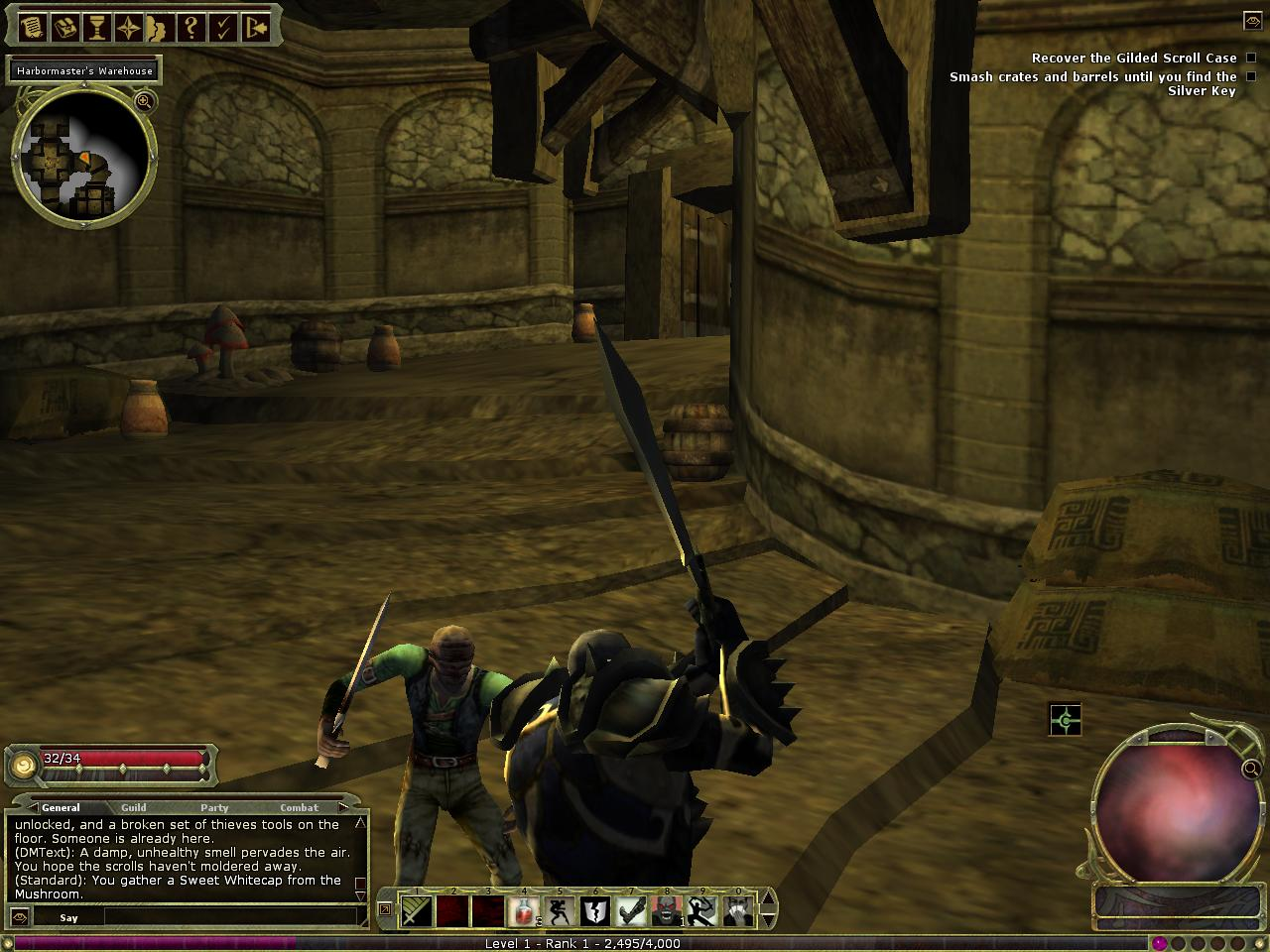 RPG LAND Game Preview: Dungeons and Dragons Online